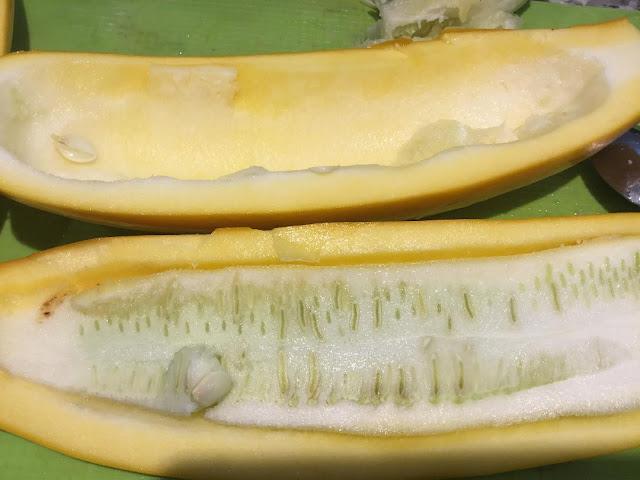 overgrown zucchini