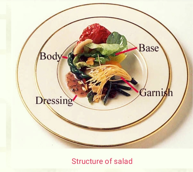 Components of salad | structure of salad