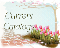Lost your catalog?