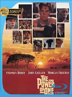 The Power of One (1992) HD [1080p] Latino [GoogleDrive] PGD