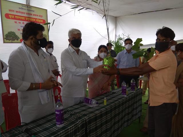 वनमंत्री व कृषीमंत्र्यांच्या हस्ते बांबू- सागवानच्या रोपांचे वाटप