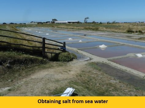 Evaporation of water and extraction of salt