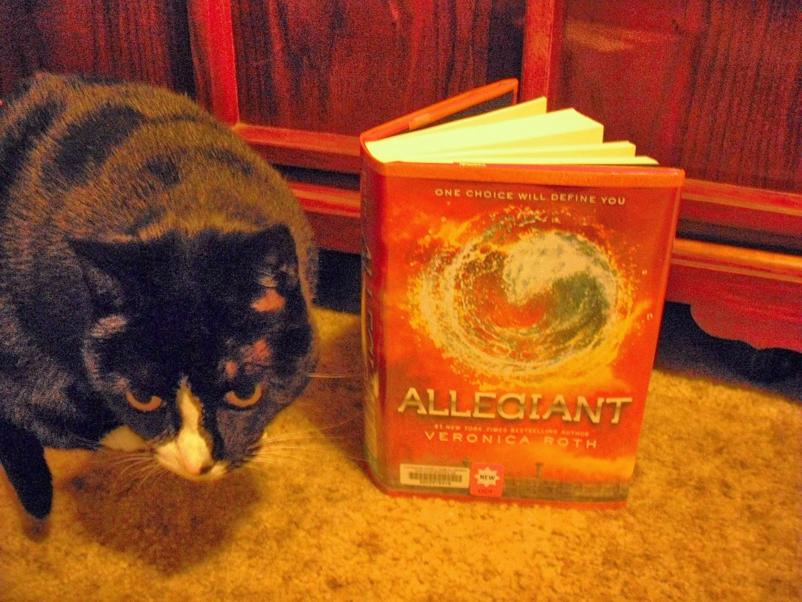 """Grab A Book From Our Stack: """"Allegiant"""" by Veronica Roth ..."""