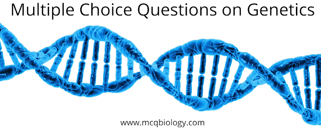 Multiple Choice Questions on Genetics