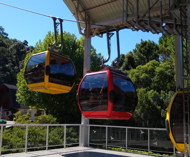 Yellow and red cable cars going up.