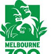 Visit to Melbourne Zoo