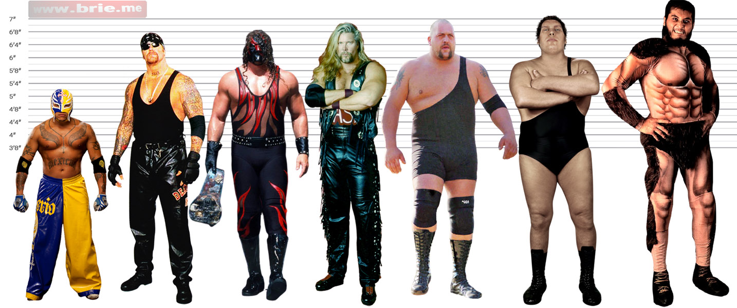 Rey Mysterio, The Undertaker, Kane, Kevin Nash, Big Show, Andre the Giant, and Giant Gonzalez height comparison