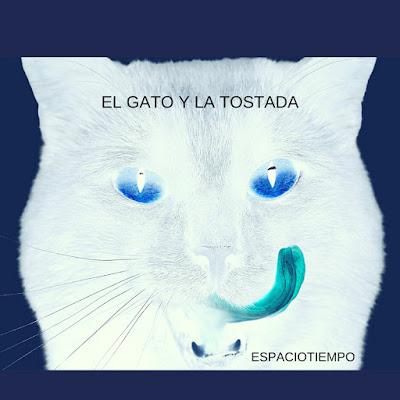 El gato y la tostada - Espaciotiempo