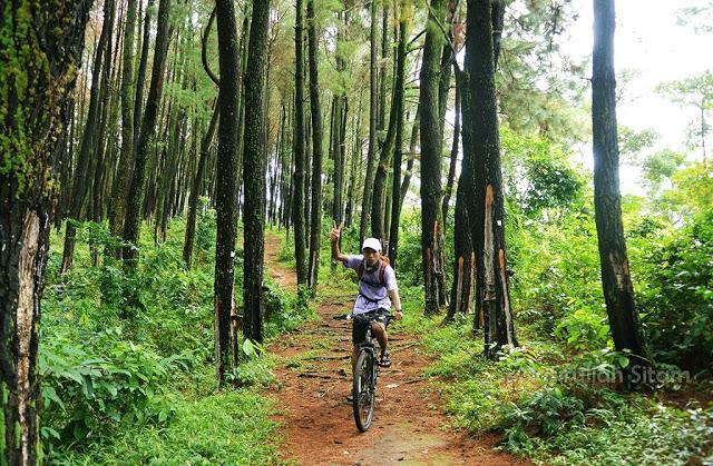 Bersepeda di Pinus Setro Batealit Jepara