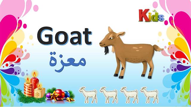 اسماء الحيوانات بالانجليزية
