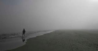 http://www.diarioinformacion.com/alicante/2014/01/09/niebla-envuelve-playas-paseos/1455860.html