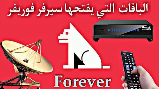 forever server- سيرفر فوريفر -  server forever