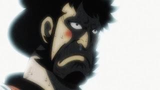 ワンピースアニメ 989話 ワノ国編 | ONE PIECE 錦えもん