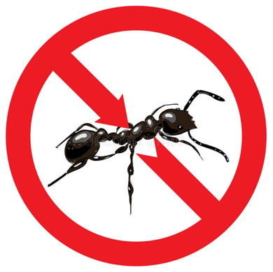 Dedetizadora de formigas na zona norte leste oeste sul