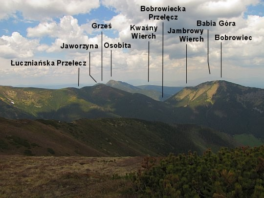 Znalezione obrazy dla zapytania panorama trzydniowianski wierch