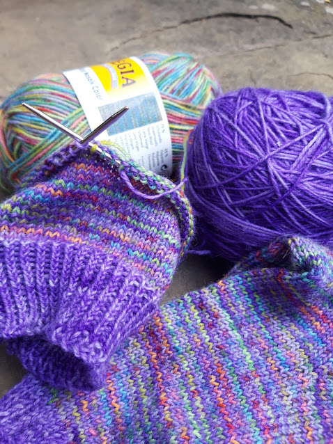 Close up of partially knitted socks.  The yarn is purple and a variegated rainbow yarn knitted in close stripes