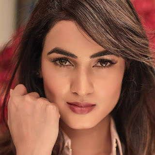 Sonal Chauhan hot, movies, age, husband name, biography, upcoming movies, photos, new movie, images, bikini, hot photos, hd photos, wallpaper, marriage, family