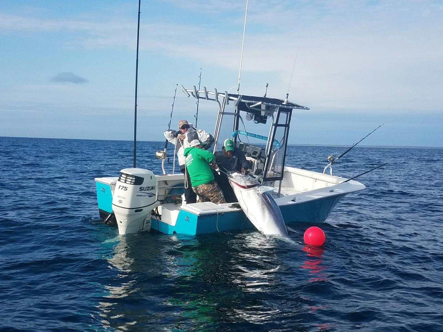 Degs fishing report capt chris for Cape lookout fishing report