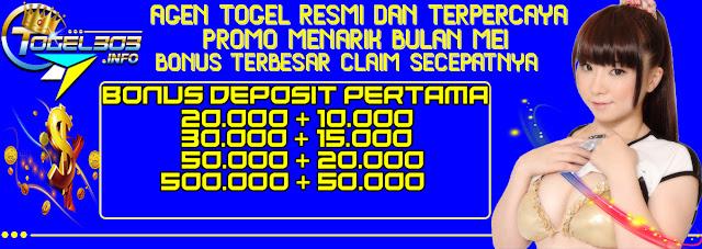http://blog.togel303.info/promo-bonus-deposit-new-member/