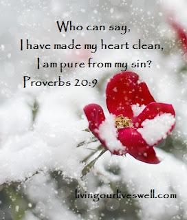 Proverbs 20:9