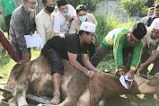 Kabaharkam Polri Serahkan Sapi Qurban ke PWNU Provinsi Sumut