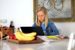 6 Kendala Yang Sering Dikeluhkan Dalam Pembelajaran Online
