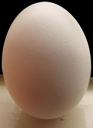 Foto de un huevo blanco