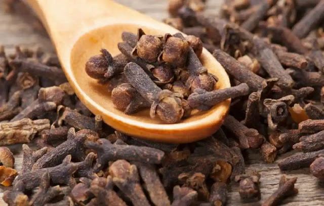 6 Untold Health Benefits of Cloves You Always Wanted To Know