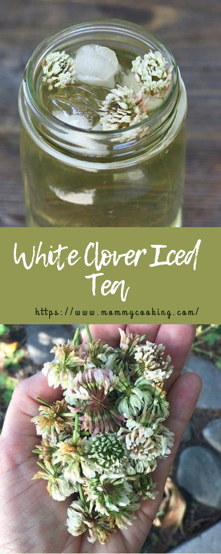 White Clover Iced Tea #cocktail #icedtea #drinks