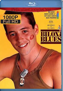 Los apuros de un recluta (Biloxi Blues) (1988) [1080p BRrip] [Latino-Inglés] [LaPipiotaHD]
