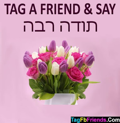Thank you in Hebrew language
