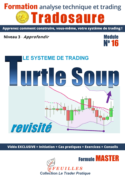 turtle-soup-systeme-trading
