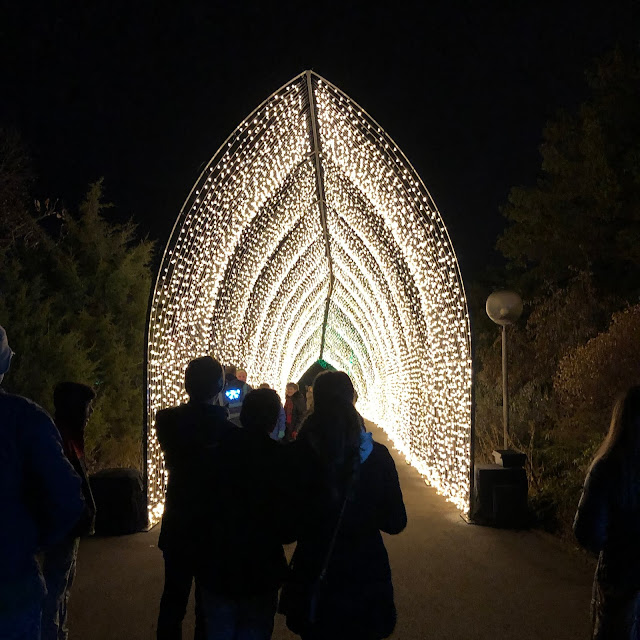 Pausing at the entrance of the Golden Cathedral at Lightscape at Chicago Botanic Garden!