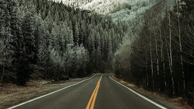 Wallpaper free snow, winter, road, asphalt, forest, trees