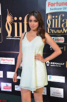 Celebrities in Sizzling Fashion at IIFA Utsavam Awards 2017 Day 1 27th March 2017 Exclusive  HD Pics 22.JPG