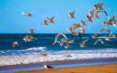 Dünya, Cennete göre müminin zindanıdır
