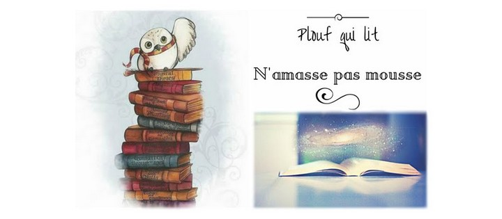 https://ploufquilit.blogspot.fr/