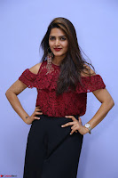 Pavani Gangireddy in Cute Black Skirt Maroon Top at 9 Movie Teaser Launch 5th May 2017  Exclusive 067.JPG