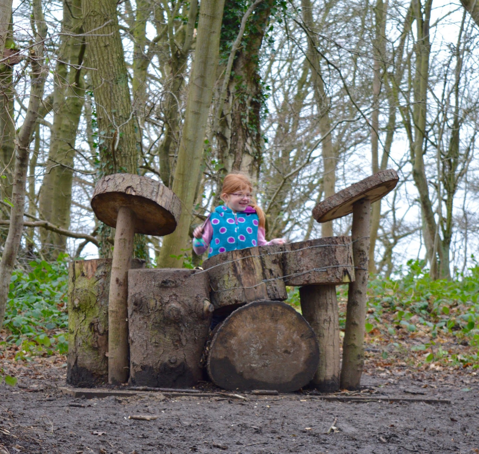 10 of the best family walks in North East England with a cafe and play park nearby - Plessey Woods