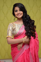 Anupama Parameswaran in Saree ~  Exclusive 003.jpg