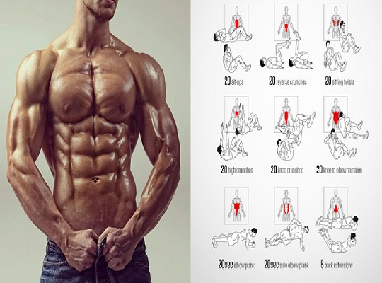 Best Ab Exercises & Workouts