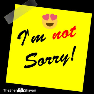 Sorry Shayari In Hindi (सॉरी शायरी माफ़ी शायरी )