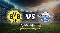 نتيجة مباراة بادربورن وبوروسيا دورتموند اليوم الاثنين بتاريخ 31-05-2020 الدوري الالماني