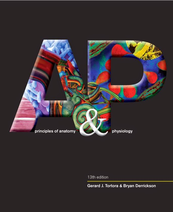 Erfreut Anatomy And Physiology 13th Edition Pdf Fotos - Menschliche ...