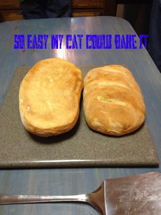 Giant French Bread 3D Pillow - Shelfies  |Cat French Bread