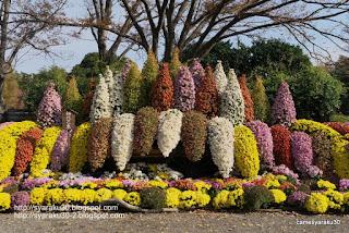 菊花展の正面飾り写真