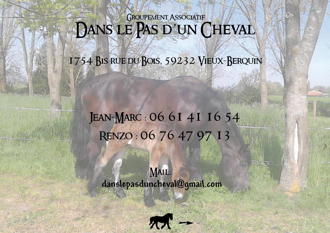 https://danslepasduncheval.blogspot.fr/