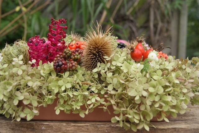 Blütentablett mit Hortensien Brombeeren Wilder Möhre Hagebutten Rosen