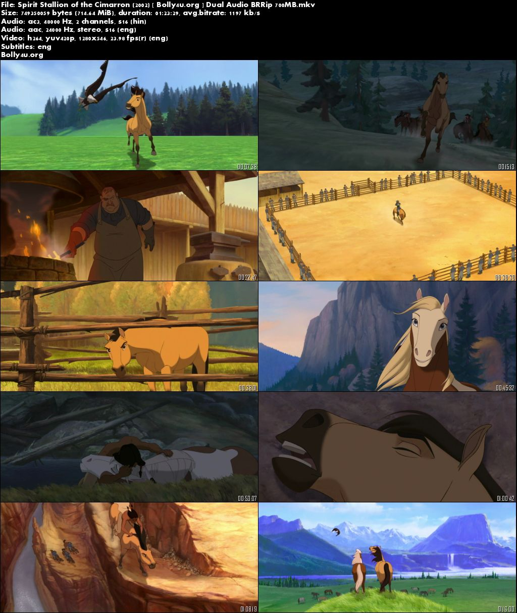 Spirit Stallion of the Cimarron 2002 BluRay Hindi 270MB Dual Audio 480p Download