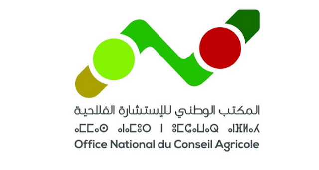 concours-office-national-du-conseil- maroc alwadifa